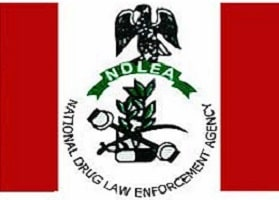 NDLEA Shortlisted Candidates